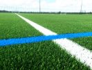 Peacock_Sports_Surfaces_football_pitch_turf